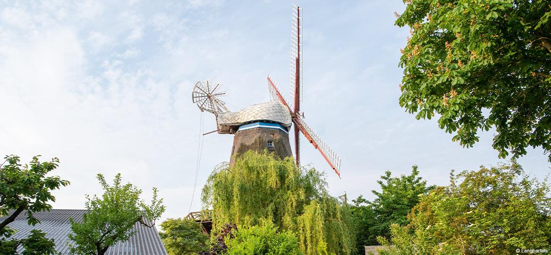 Mühle in Handorf